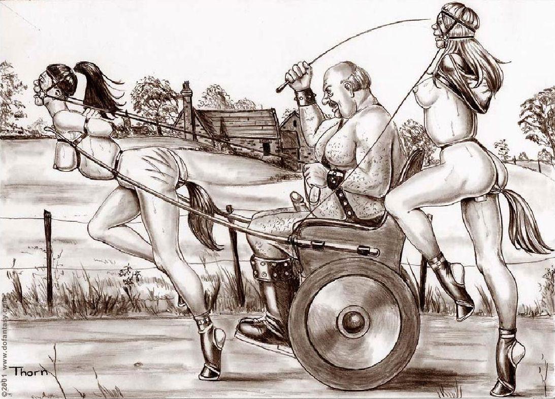 swingerclub heide ponygirl geschichten
